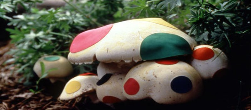 Psychedelic Art: Magic Mushrooms and Creativity