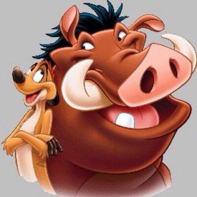Timon & Pumba (@TimonEtPumba) | Twitter