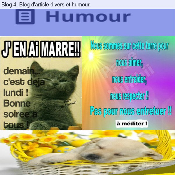 BLOG 4. Blog d'article divers et humour. Pseudos du blog nicolas540004.