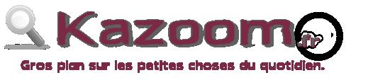 La Pinguinalité, un quotidien Insolite - Kazoom