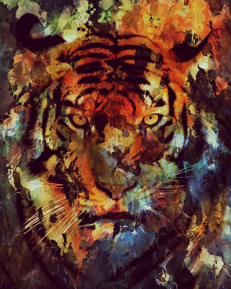 portraits d'animaux à l'aquarelle