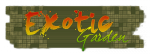 Mon Interview Exotic Garden par GG !