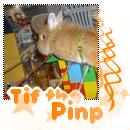 Blog de Tif-the-pinp - Blog de Tif-the-pinp