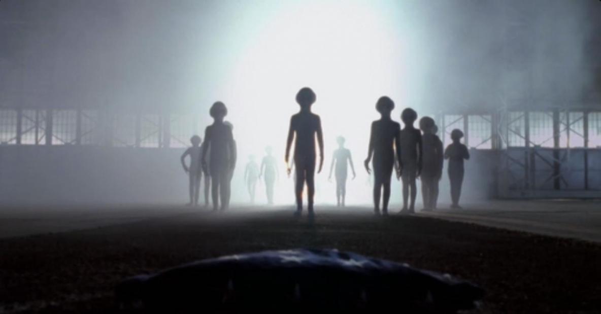 Les aliens gris et la moisson des âmes après la mort   Humans Are Free