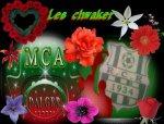 Blog de tarek-mca503 - Blog de karim-mca503