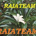 Raiateam