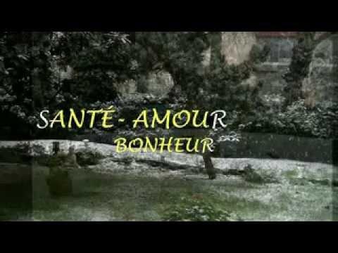 SOUHAITS DE BONNE ANNÉE-RÉTROSPECTIVE 2011/2012/2013