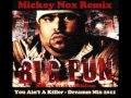 Big Pun - You Ain't A Killer / Dreamm Mix 2011...