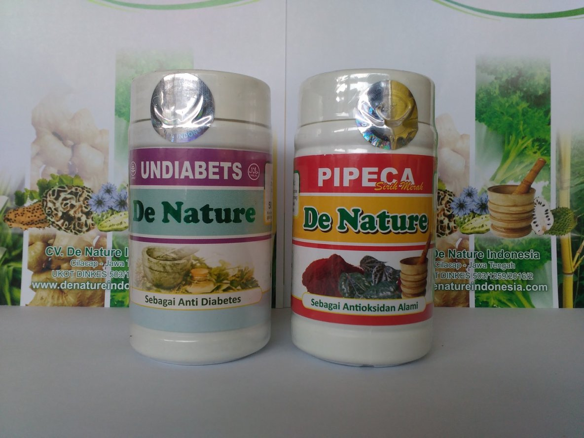Alternatif Obat Diabetes Herbal | Komododragonfoundation.org