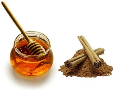 Cinnamon And Honey – Health Benefits - Healthy Food Society