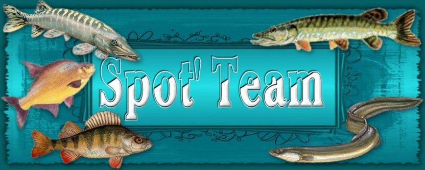 Spot'Team