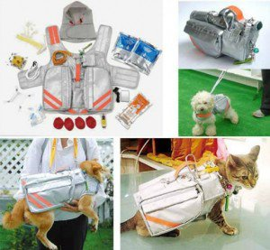 Un kit de survie pour chat (ou chien)