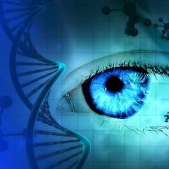 Une thérapie génique contre la cécité pour les riches (850000$)