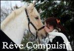 Blog de Reve-compulsif