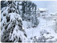 Hotels in Himachal, Hotels in Himachal Pradesh, Hotels in Kullu, Hotels in Manali, Hotels in Shimla