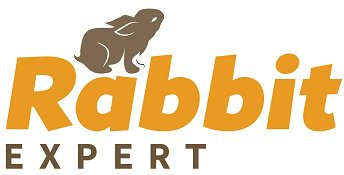Rabbit Expert – Learn more here