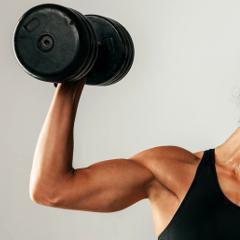 Une hormone intestinale augmente la masse musculaire et prévient la prise de poids