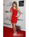 Grammy Awards TS Red Carpet Evening short Dress Queen Celebrity Dresses : Cheaptbdress.com - US$68.99 - english