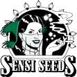 Super Skunk Automatic Seeds - Sensi Seeds