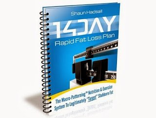 14 day rapid fat loss by Shaun Hadsall Review - Scam or Legit ?