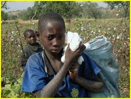 Sénégal : la lutte contre le travail des enfants peine à se mettre en place