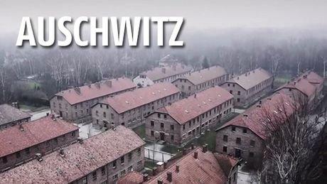 Ces images d'Auschwitz filmées par un drone à l'occasion des 70 ans de sa libération sont à glacer le sang, et un...