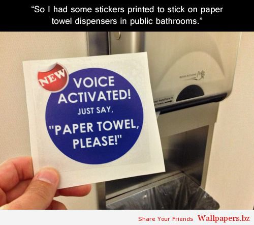 Paper Towel, Please! | Funny Wallpapers
