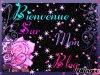 Posté le lundi 10 janvier 2011 22:33 - Blog de zineb300