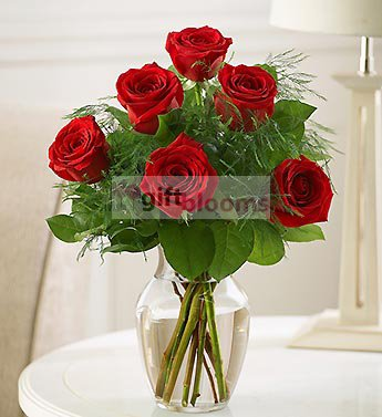 Send Mothers Day Roses To Your Mom