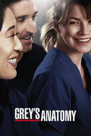Grey's Anatomy - Season 12 Episode 9 The Sound Of Silence | Show3.best-fullmovie