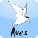 Résultats des comptages de dortoirs de cormorans: Aves, pôle ornithologique de Natagora, association de protection de la nature