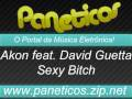 Akon feat. David Guetta - Sexy Bitch (Original Remix) - Blog de manonf29
