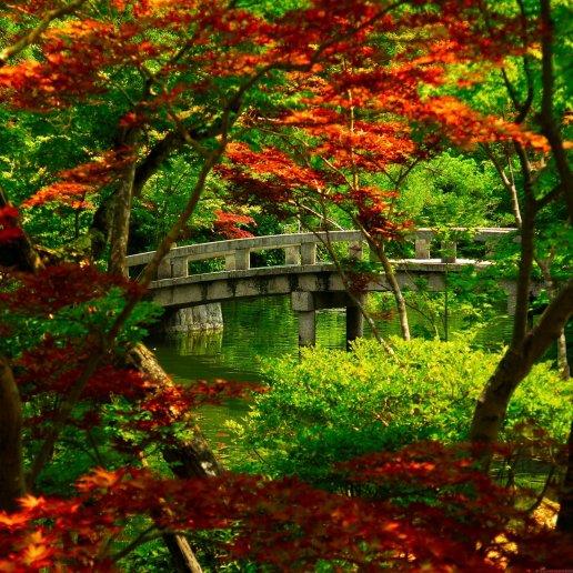 Beautiful nature garden Hd Desktop Wallpapers