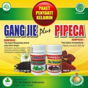 Paket Baru Obat Sipilis De Nature - Obat Sipilis