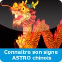 Calculer votre signe chinois: ICI!
