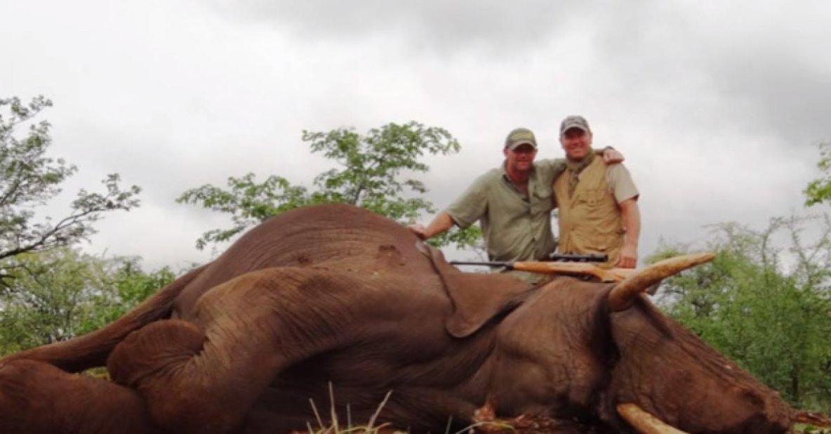 Pascal Olmeta, ancien footballeur et chasseur d'éléphants est victimes d'insultes sur internet