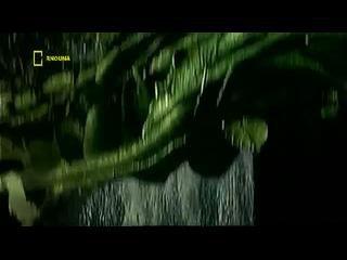 MYTHBUSTER CONDUIRE EN LUNETTE NOCTURE PART1