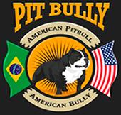 Filhotes de Pit Bull e American Bully - Canil Pit Bully