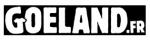 Pendentif Unisexe AC/DC / Bells | 11 € sur Goeland.fr