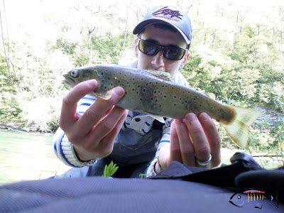 Doktorfishs12, pêche aux leurres en Aveyron: En manque de temps