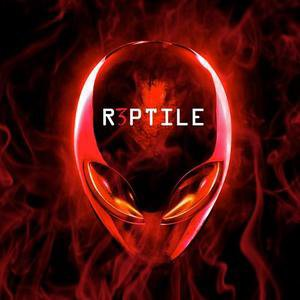 MD Project - R3PTILE