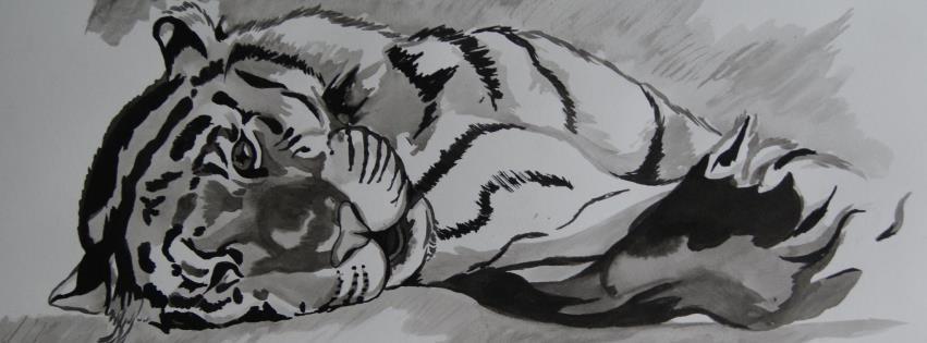 C'maloé dessin artiste animalier | Facebook