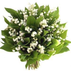 Muguet du 1er mai: histoire de la fleur porte-bonheur.