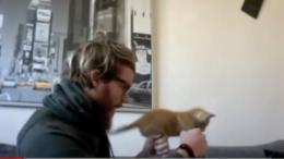 Secret Story 8: Geoffrey accusé d'avoir maltraité un chaton dans une vidéo !