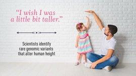 https://www.jax.org/news-and-insights/jax-blog/2015/december/the-genetics-of-violent-behavior