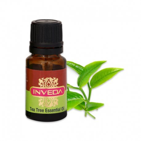 Buy Tea Tree Essential Oil - Best Suited for Oily & Acne Prone Skin