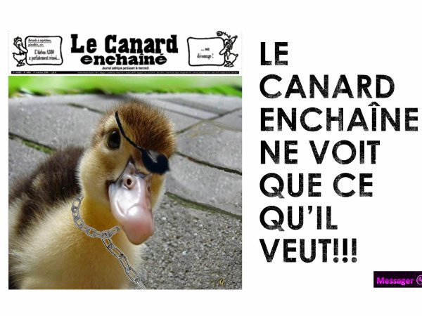 """CE QUE LE """"CANARD"""" NE DIT PAS 1/3"""