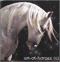On a tendance à oublier que l'équitation est un art. Or l'art n'existe pas sans amour.