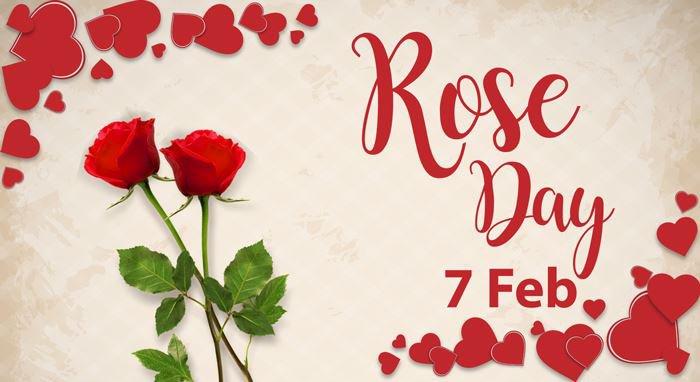 Top 10 Rose Day Romantic Quotes And Status In Hindi - SPEEDINDIA24