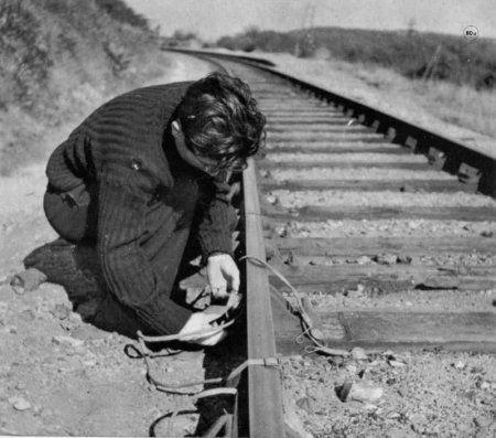 Appel à témoins. - Normandie-1944, L'été de la Liberté